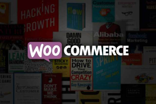 The 25 Best eCommerce Books 2017 that will Shape your (WooCommerce Store) for Success