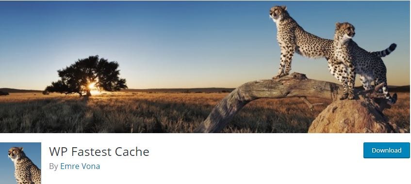 Figure 11 - WP Fastest Cache - List of Free WordPress Plugins to Improve Your Site