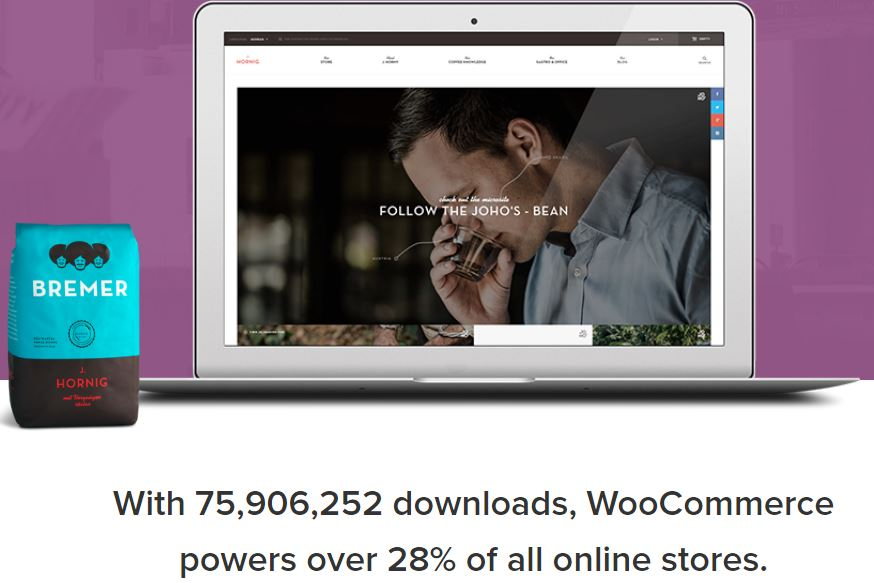 Figure 14 - WooCommerce - List of Free WordPress Plugins to Improve Your Site
