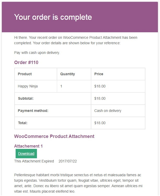 Figure 5 - An example email, sent for the 'WooCommerce on order complete' status